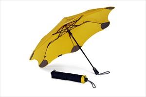 At last! The indestructible umbrella!