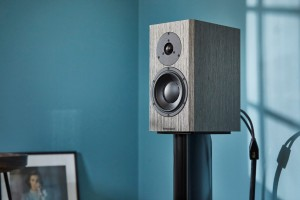 Dynaudio Special Forties. Special indeed.