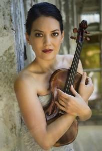 Violin AAM